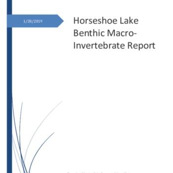 Horseshoe Lake Report[FINAL DRAFT] compressed photos.pdf